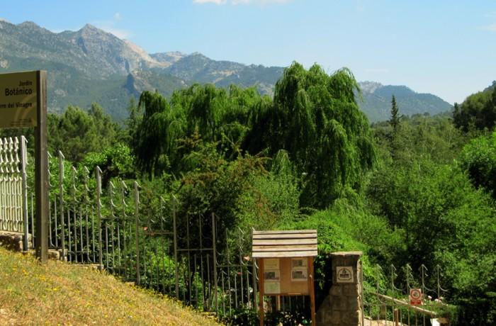 Jard n bot nico torre del vinagre la casa serrana for Jardin botanico tarifas