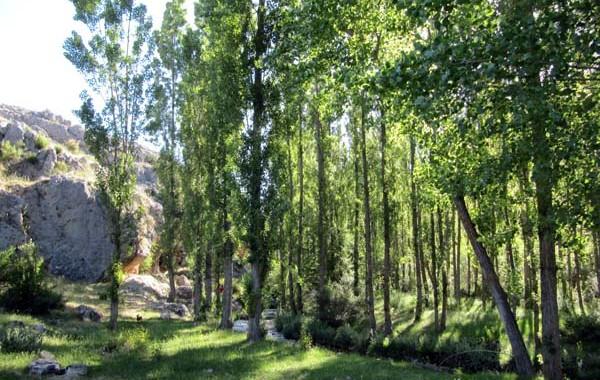Cerezo-Fuente del Muso-Aldea Cañuelos-Cerezo
