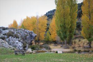 Nacimiento río Muso